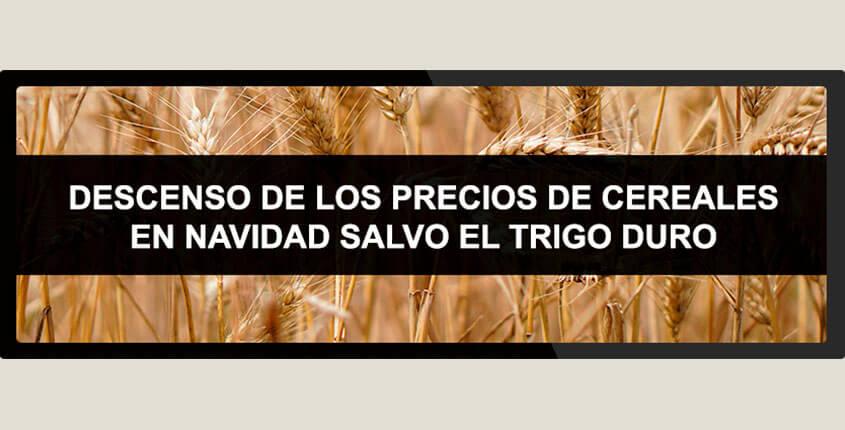 precios-trigo