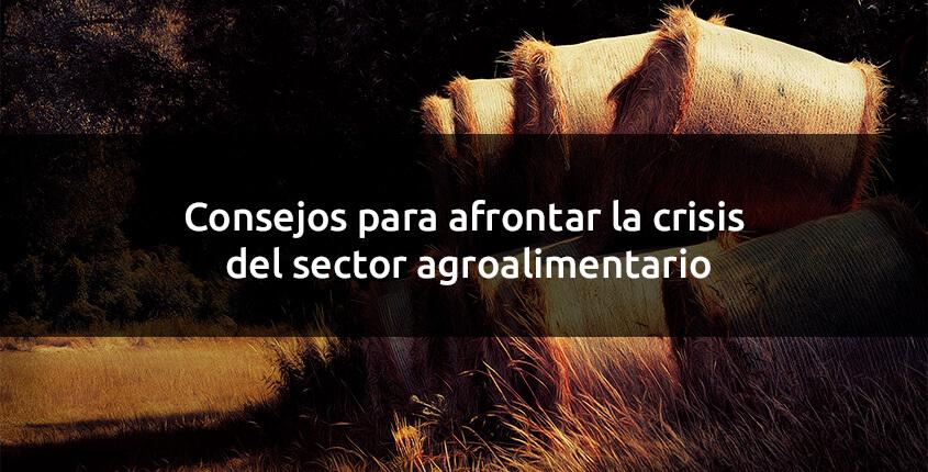 consejos-sector-agroalimentario